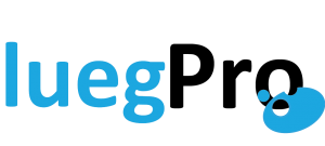 Logo des Lueg Projektjahres